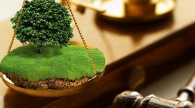 Жиззахда 73,5 гектар ер майдони ўзбошимчалик билан эгаллаб олинган